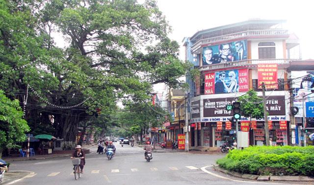 Cây đa lịch sử thị xã Phú Thọ