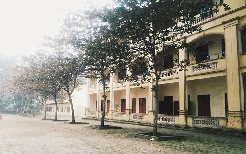 Sân sau nhà A1 - THPT Hùng Vương