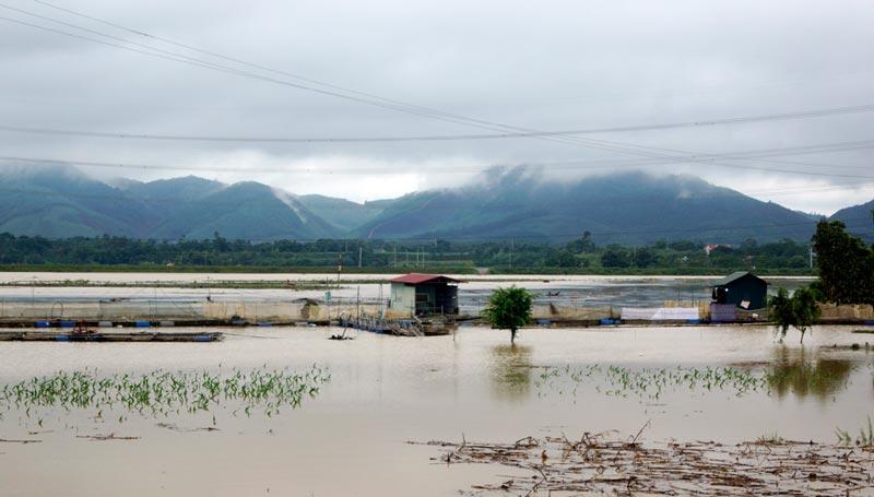 Phú Thọ ứng phó với mưa lũ do hoàn lưu sau bão số 3
